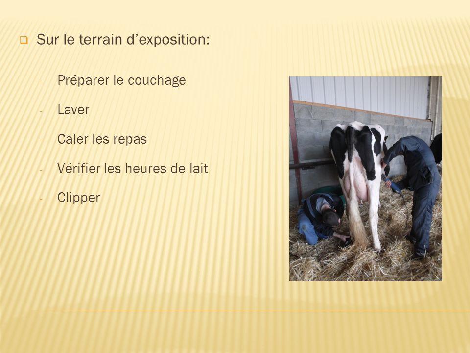 Sur le terrain dexposition: - Préparer le couchage - Laver - Caler les repas - Vérifier les heures de lait - Clipper