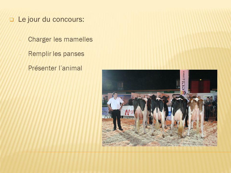 Le jour du concours: - Charger les mamelles - Remplir les panses - Présenter lanimal