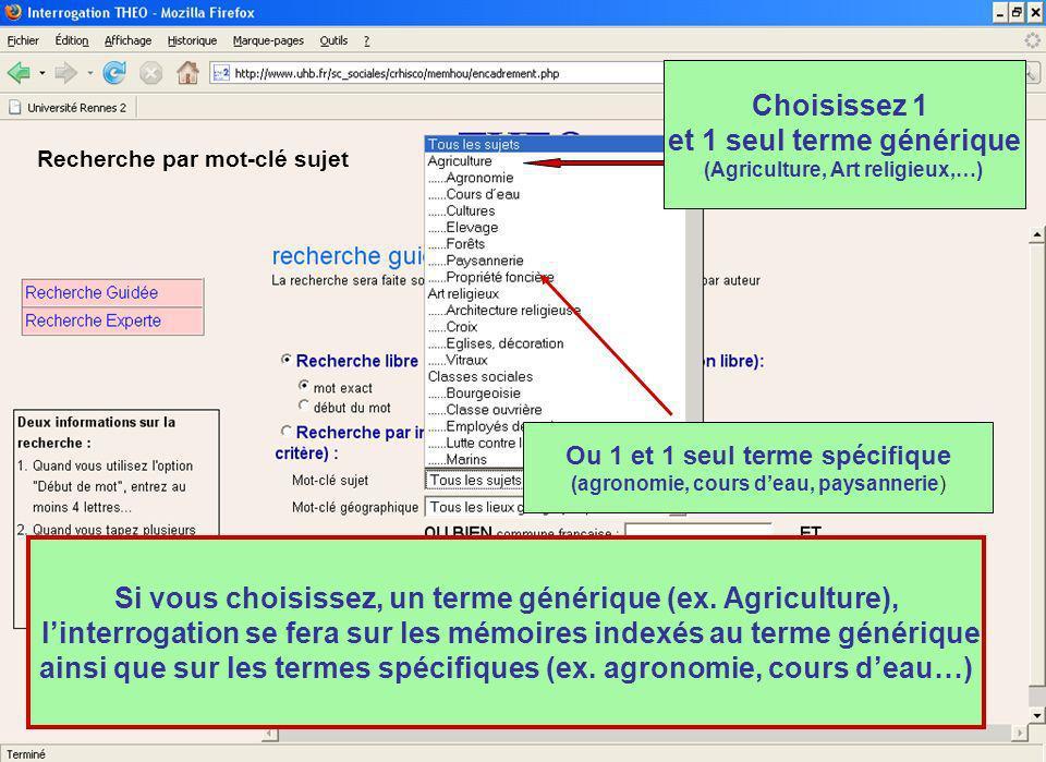 Choisissez 1 et 1 seul terme générique (Agriculture, Art religieux,…) Ou 1 et 1 seul terme spécifique (agronomie, cours deau, paysannerie) Si vous choisissez, un terme générique (ex.