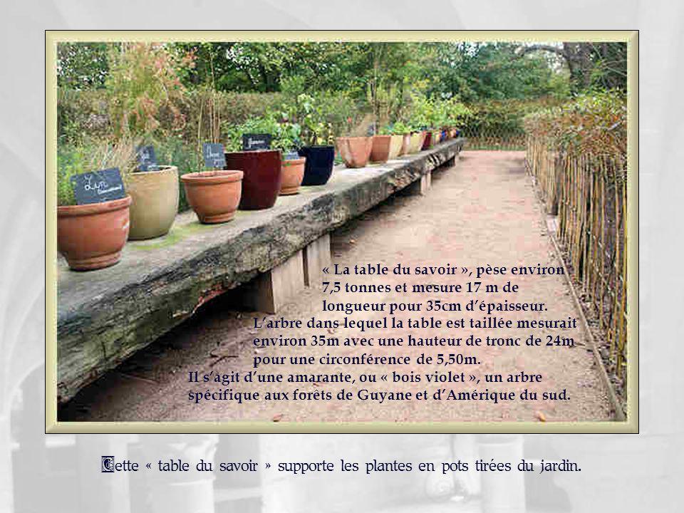Ce jardin nest pas la reconstitution dun jardin cistercien à Royaumont dont on na conservé nulle trace.