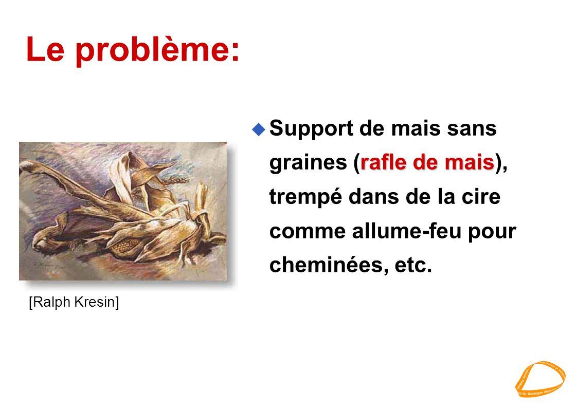 Le problème: rafle de mais u Support de mais sans graines (rafle de mais), trempé dans de la cire comme allume-feu pour cheminées, etc.