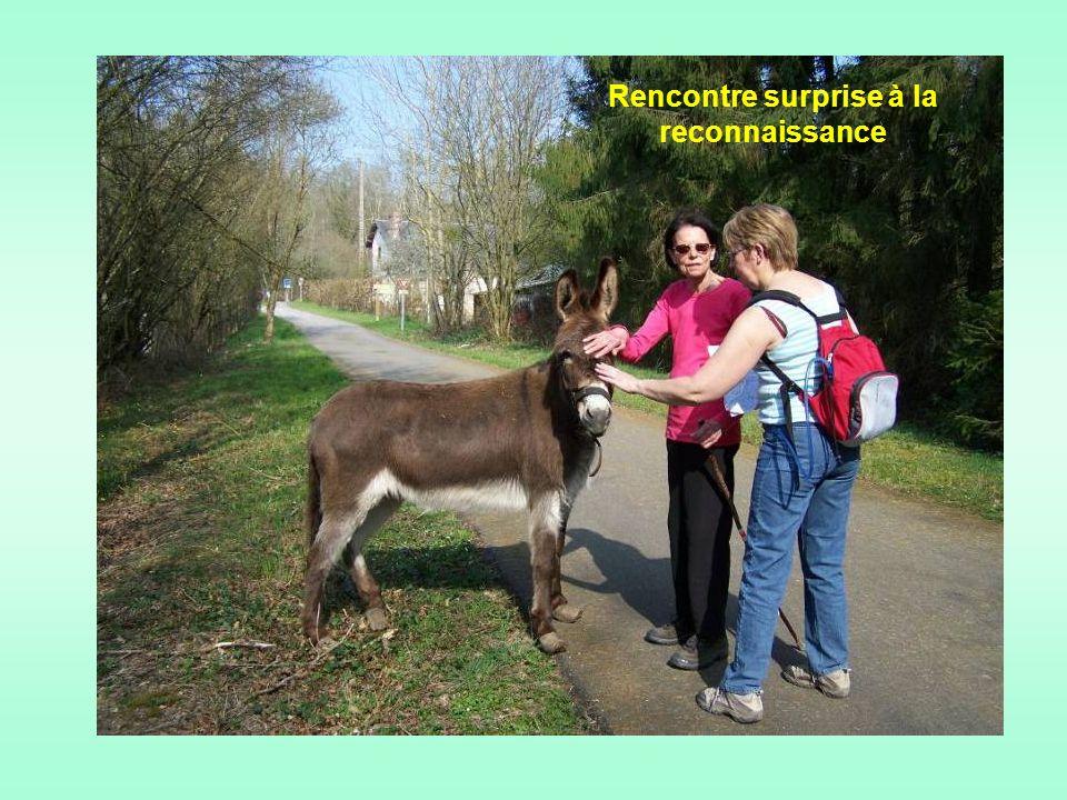 … Nous avions reconnu ce circuit de Ferrières-Saint- Hilaire comme un très bel endroit chargé de charme et dhistoire.