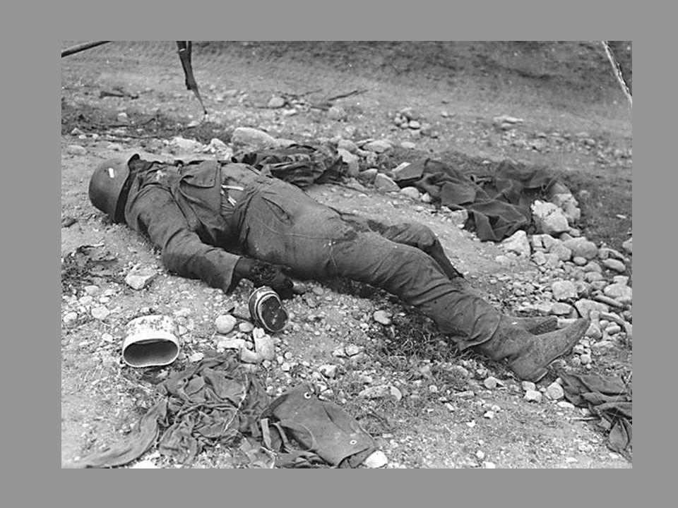 Des centaines de cadavres d'hommes et de chevaux couvraient la plaine ». La retraite se transforme en déroute.