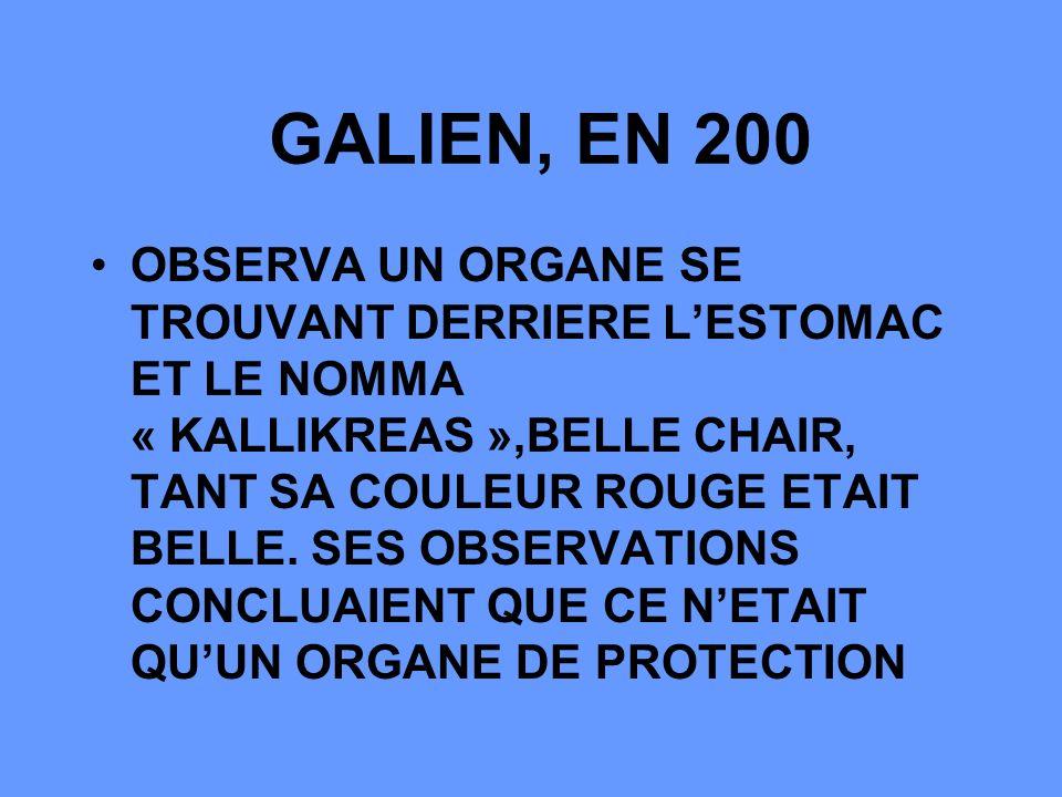 GALIEN, EN 200 OBSERVA UN ORGANE SE TROUVANT DERRIERE LESTOMAC ET LE NOMMA « KALLIKREAS »,BELLE CHAIR, TANT SA COULEUR ROUGE ETAIT BELLE.