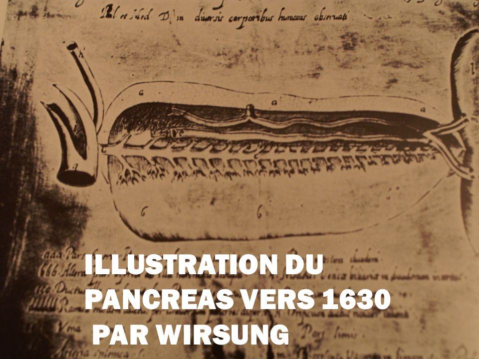GIOVANNI BATTISTA EN 1674 LE GRAND ANATOMISTE DE PADOUE RESTAIT PERPLEXE FACE AU DIABETE ET CONCLUAIT: « MORBUS IN SEDE INCERTA LOCATUS »