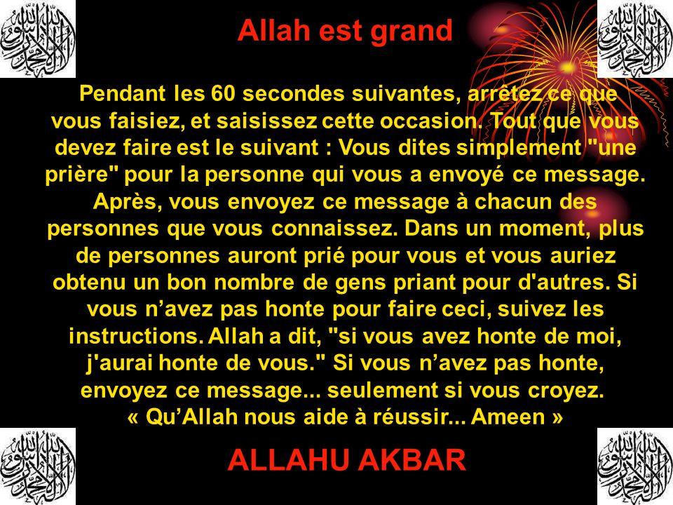 Allah est grand Pendant les 60 secondes suivantes, arrêtez ce que vous faisiez, et saisissez cette occasion. Tout que vous devez faire est le suivant