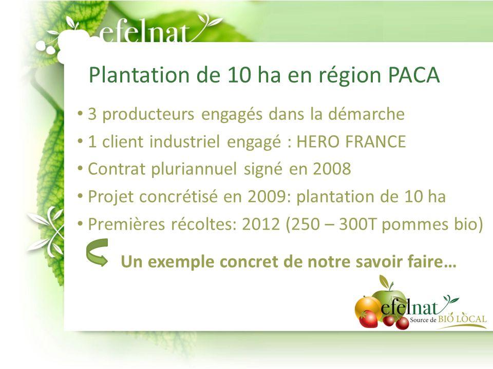 Plantation Vergers dédiés pommes bio : Monsieur Pierre Clerc