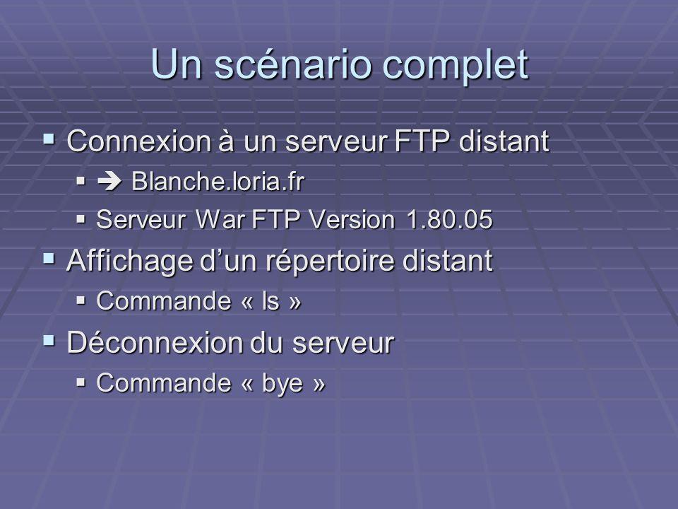 Un scénario complet Connexion à un serveur FTP distant Connexion à un serveur FTP distant Blanche.loria.fr Blanche.loria.fr Serveur War FTP Version 1.