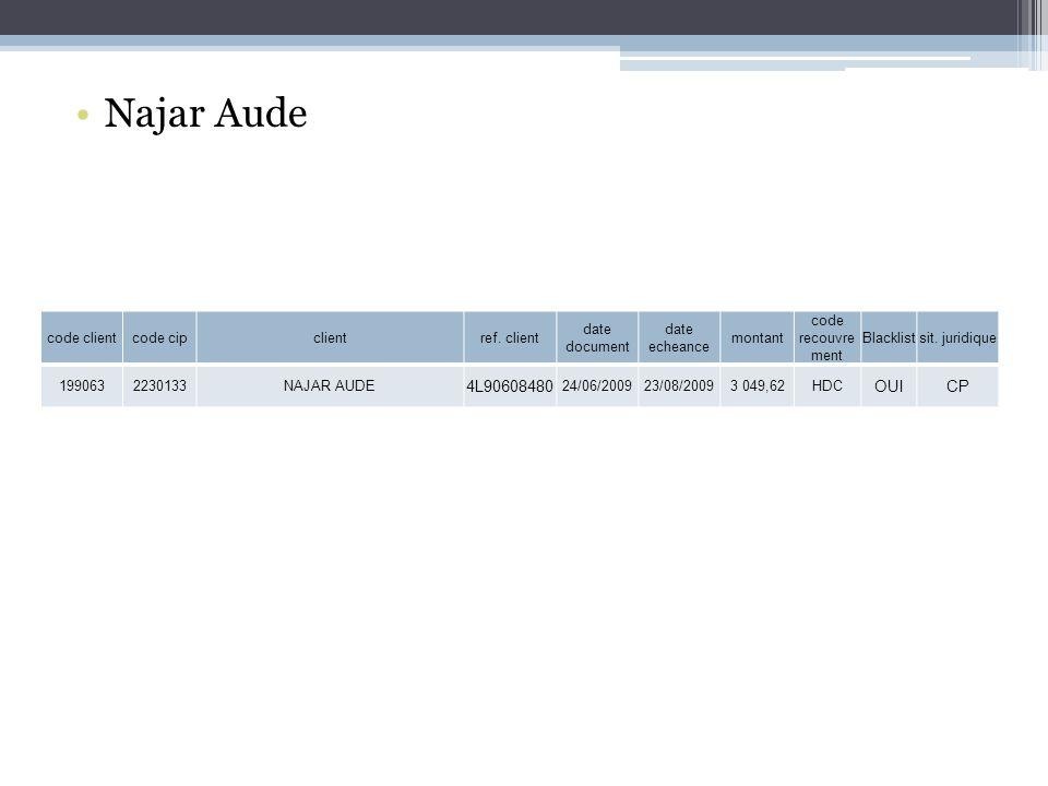 Najar Aude code clientcode cipclientref.