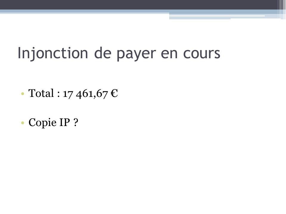 Injonction de payer en cours Total : 17 461,67 Copie IP ?