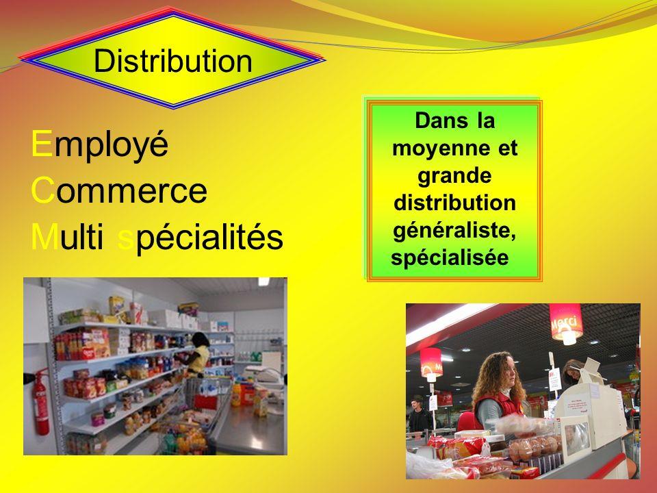 Distribution Employé Commerce Multi spécialités Dans la moyenne et grande distribution généraliste, spécialisée