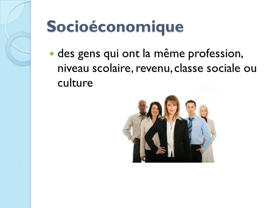 Socioéconomique des gens qui ont la même profession, niveau scolaire, revenu, classe sociale ou culture