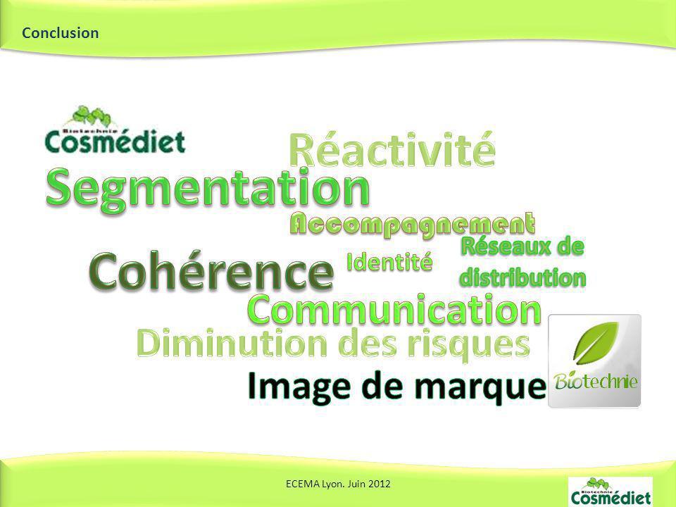 Conclusion ECEMA Lyon. Juin 2012