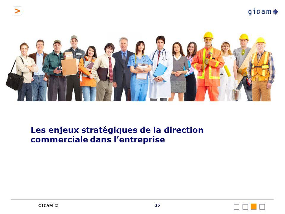 > GICAM © Les enjeux stratégiques de la direction commerciale dans lentreprise 25