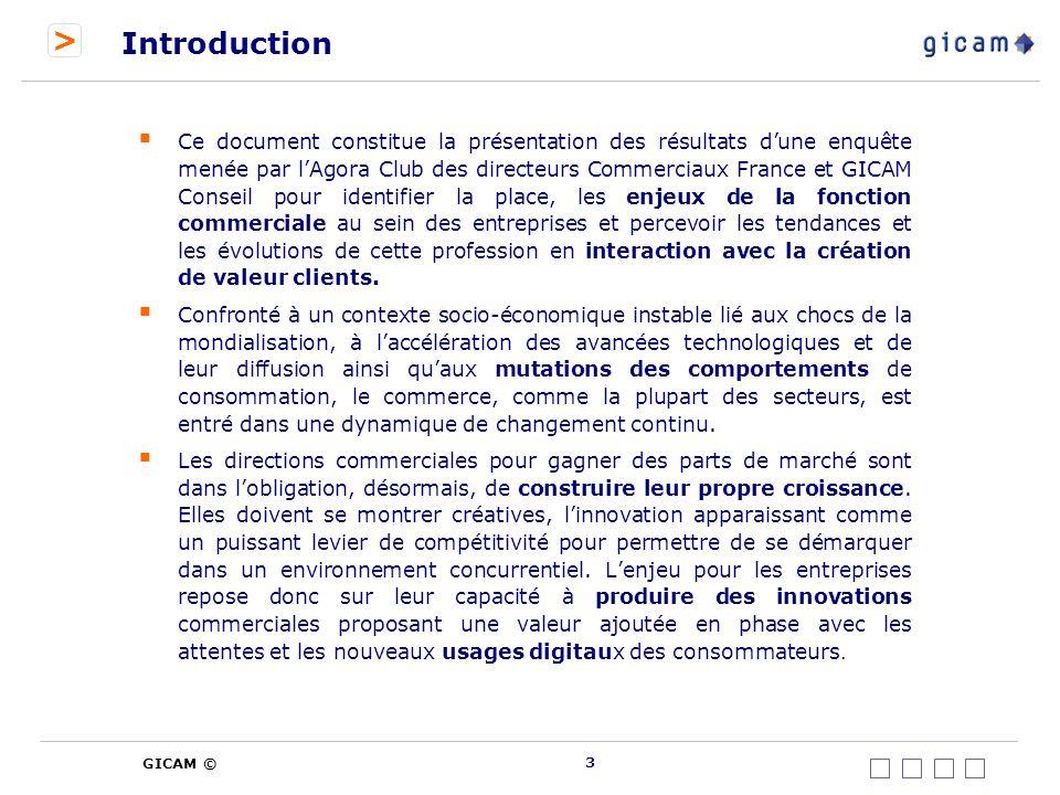 > GICAM © Description de la fonction commerciale dans lentreprise 34 Panorama de la dynamique commerciale de 1 à 3 ans