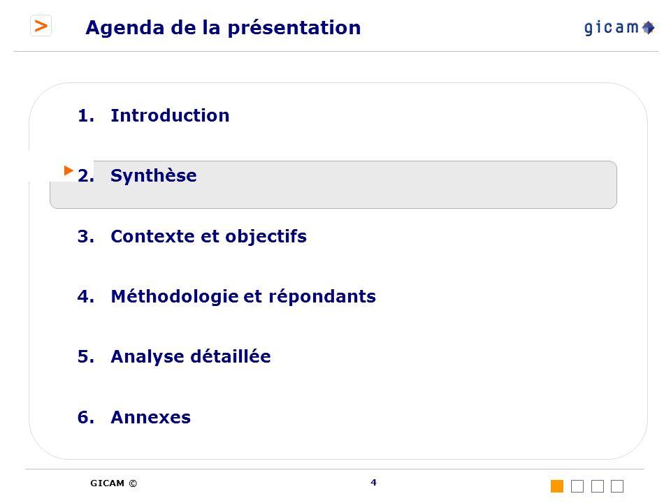 > GICAM © 4 Agenda de la présentation 1.Introduction 2.Synthèse 3.Contexte et objectifs 4.Méthodologie et répondants 5.Analyse détaillée 6.Annexes