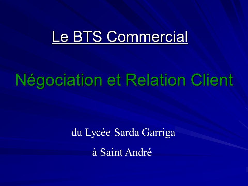 Le BTS Commercial Négociation et Relation Client du Lycée Sarda Garriga à Saint André