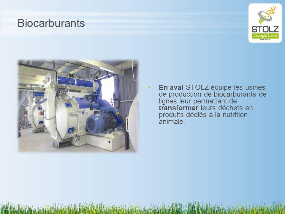 Biocarburants En aval STOLZ équipe les usines de production de biocarburants de lignes leur permettant de transformer leurs déchets en produits dédiés