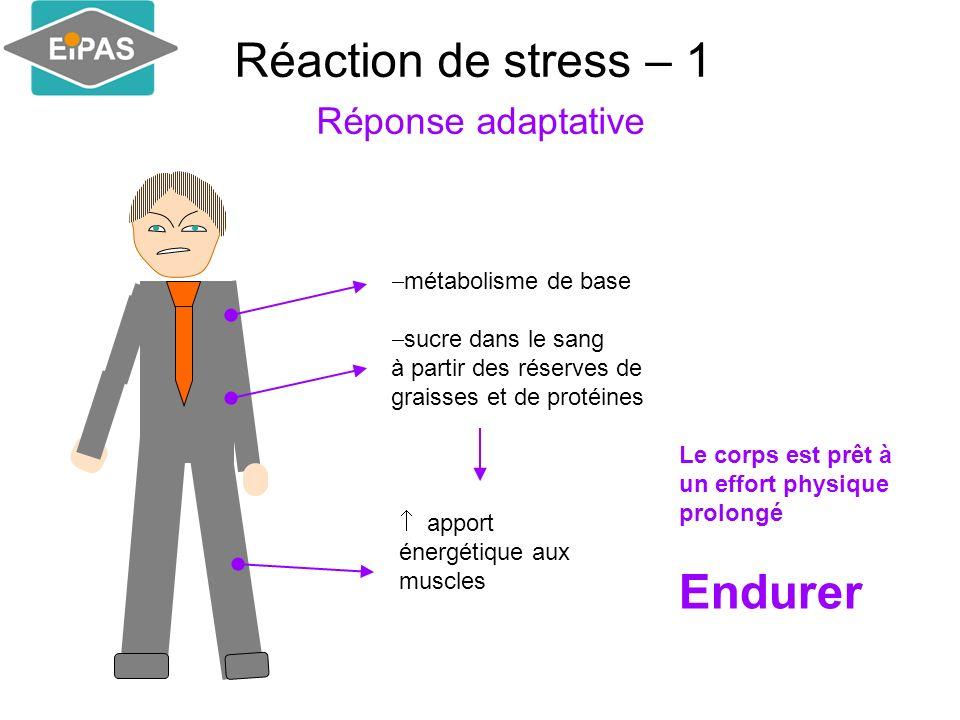Réaction de stress – 1 Réponse adaptative métabolisme de base sucre dans le sang à partir des réserves de graisses et de protéines apport énergétique