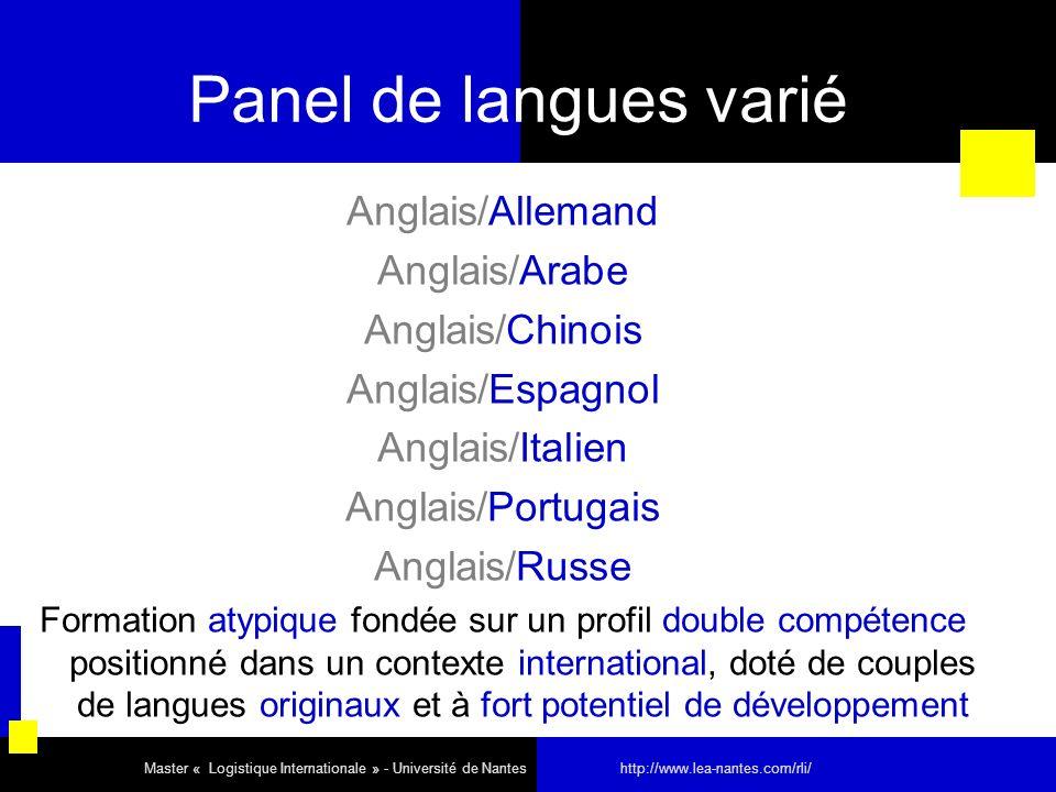 Panel de langues varié Anglais/Allemand Anglais/Arabe Anglais/Chinois Anglais/Espagnol Anglais/Italien Anglais/Portugais Anglais/Russe Formation atypi
