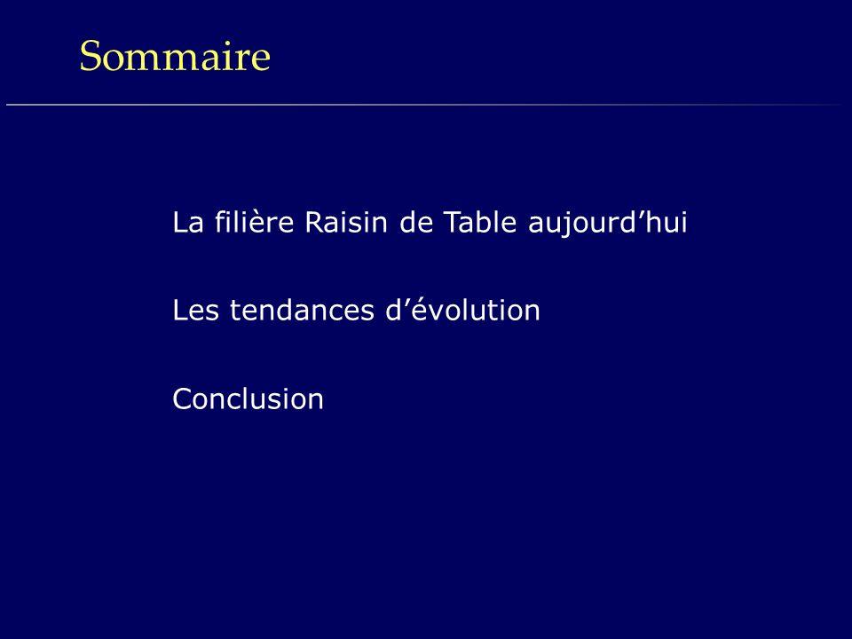 Sommaire La filière Raisin de Table aujourdhui Les tendances dévolution Conclusion