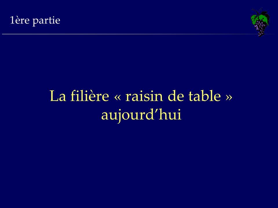 1ère partie La filière « raisin de table » aujourdhui