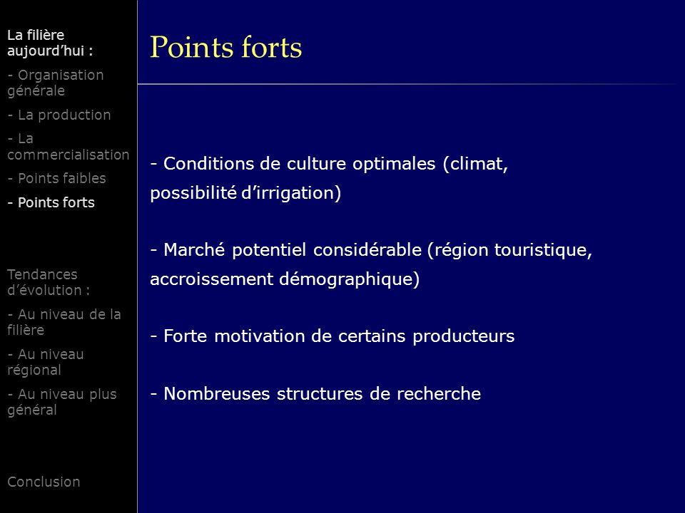 Points forts - Conditions de culture optimales (climat, possibilité dirrigation) - Marché potentiel considérable (région touristique, accroissement dé