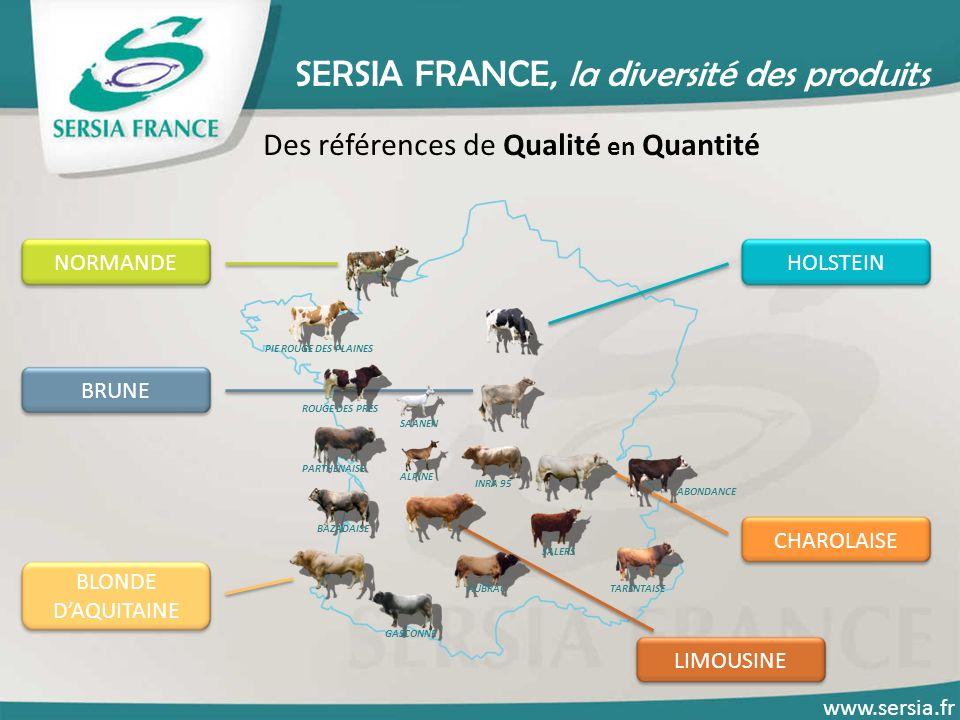 SERSIA FRANCE, la diversité des produits Des références de Qualité en Quantité HOLSTEINNORMANDE CHAROLAISE LIMOUSINE BLONDE DAQUITAINE BRUNE PIE ROUGE