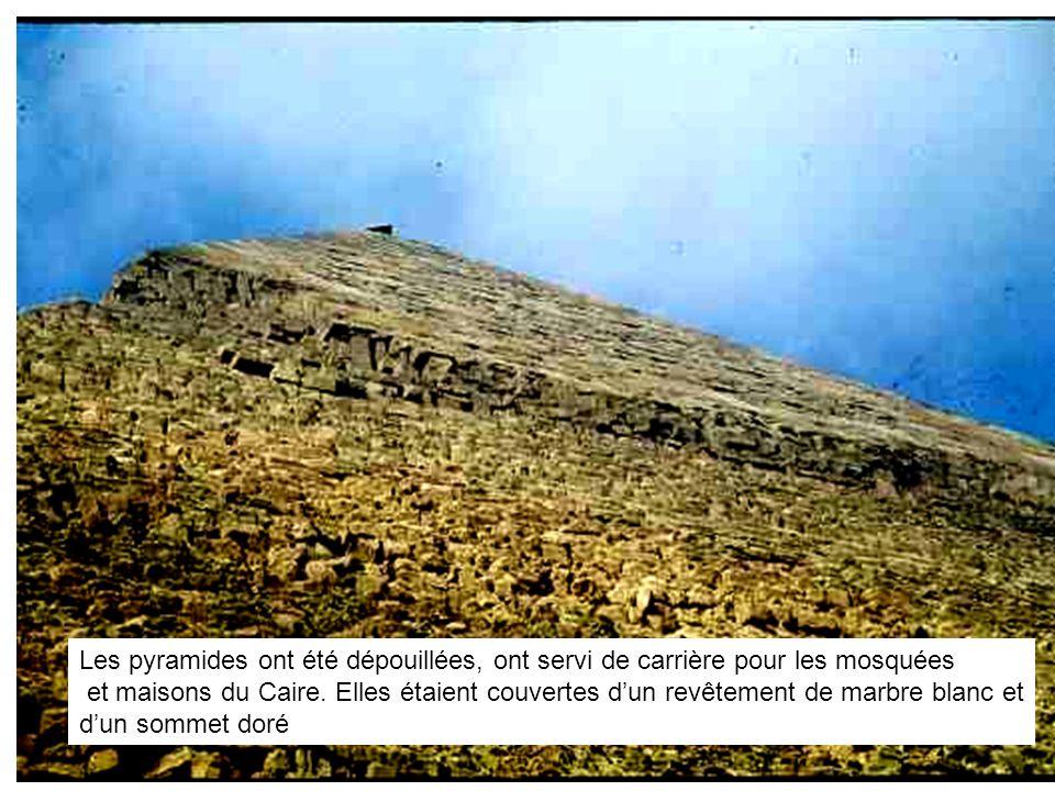 Passant sans se découvrir devant Pharaon, mon ami Jean à genoux devant le Buisson Ardent du mont Sinaî, attendant la voix improbable dun Dieu obstinément silencieux.