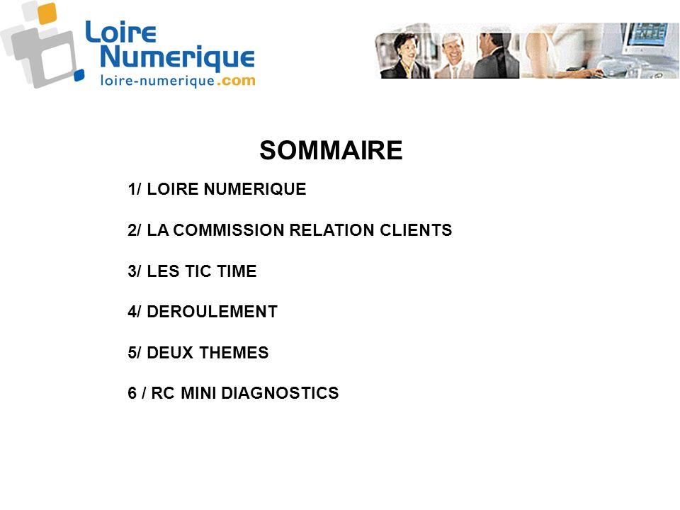 1/ LOIRE NUMERIQUE 2/ LA COMMISSION RELATION CLIENTS 3/ LES TIC TIME 4/ DEROULEMENT 5/ DEUX THEMES 6 / RC MINI DIAGNOSTICS SOMMAIRE