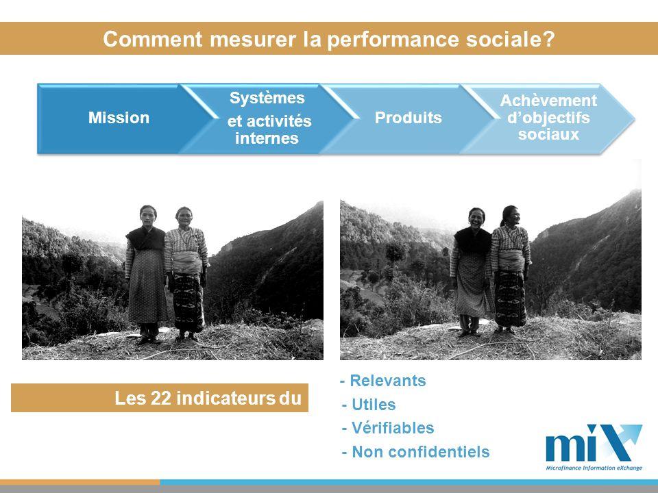 Comment mesurer la performance sociale? - Relevants - Utiles - Vérifiables - Non confidentiels Les 22 indicateurs du MIX/GTPS: Mission Systèmes et act