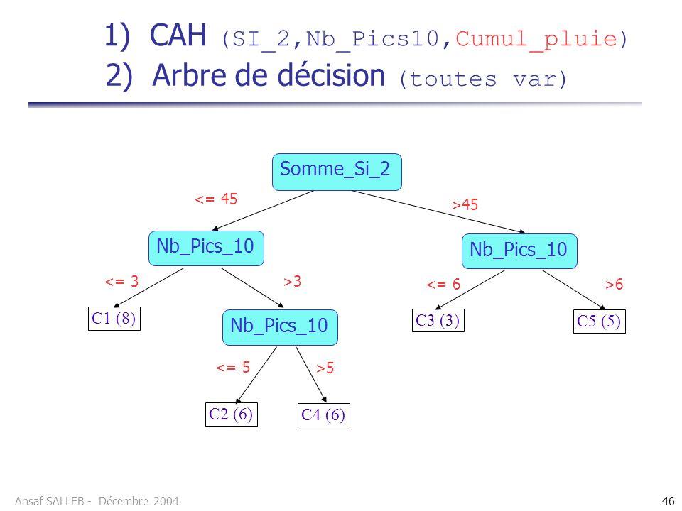 Ansaf SALLEB - Décembre 200446 2) Arbre de décision (toutes var) Somme_Si_2 C3 (3) >45 <= 45 >3 <= 3 >6 <= 6 C5 (5) C1 (8) >5 <= 5 C2 (6) C4 (6) Nb_Pics_10 1) CAH (SI_2,Nb_Pics10,Cumul_pluie)