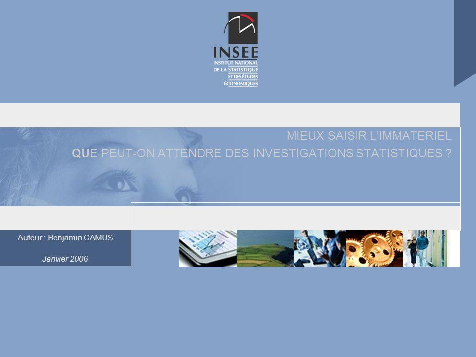Auteur : Benjamin CAMUS Janvier 2006 MIEUX SAISIR LIMMATERIEL QUE PEUT-ON ATTENDRE DES INVESTIGATIONS STATISTIQUES