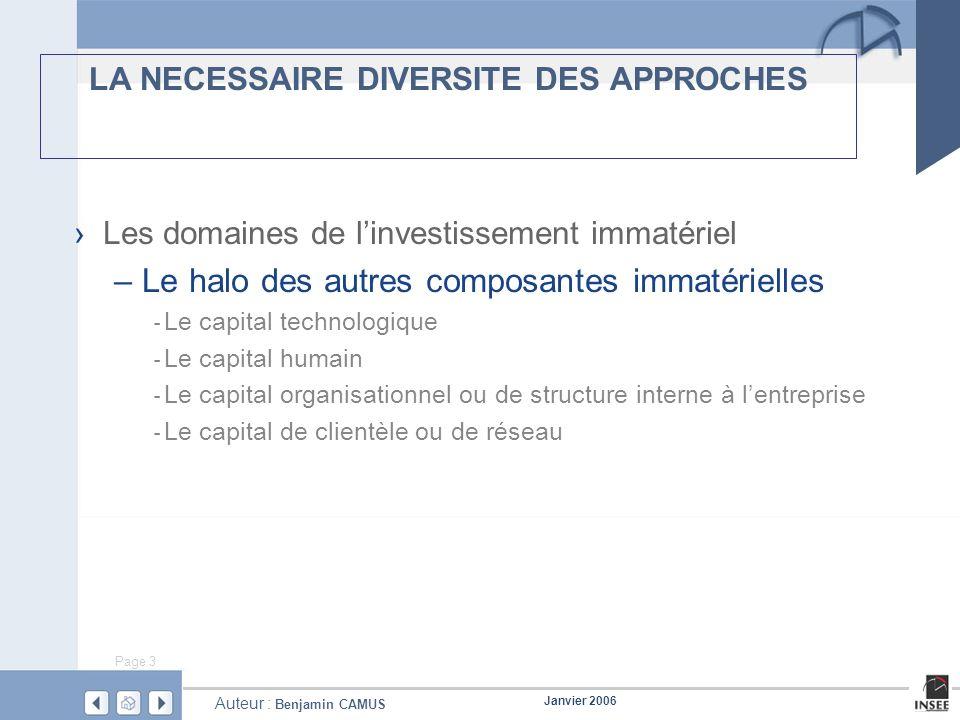 Page 3 Janvier 2006 Auteur : Benjamin CAMUS LA NECESSAIRE DIVERSITE DES APPROCHES Les domaines de linvestissement immatériel – Le halo des autres comp