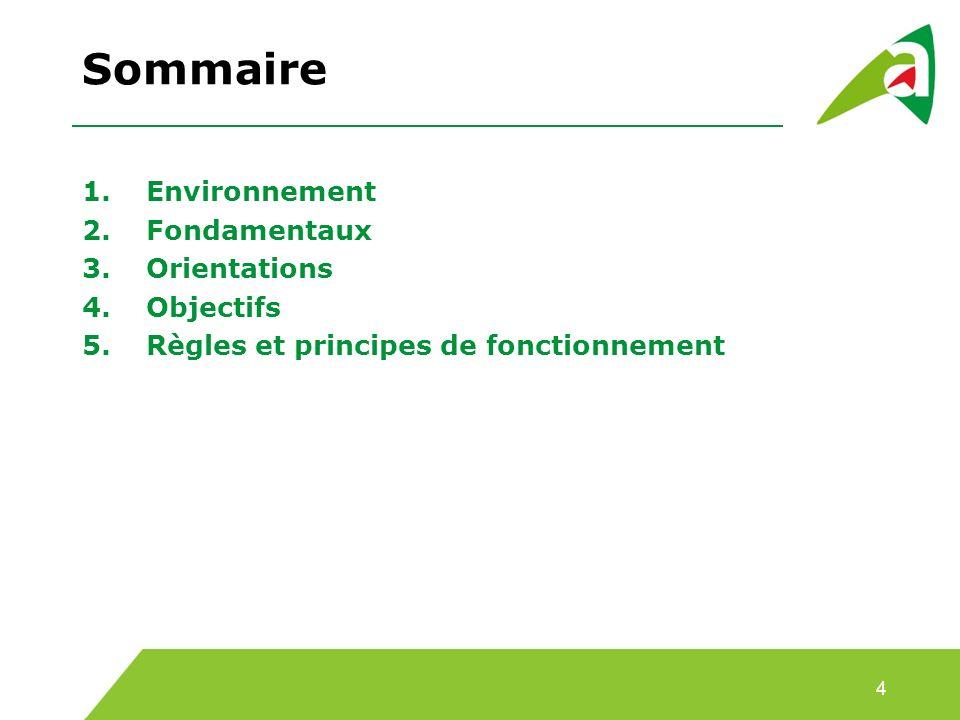 Sommaire 1.Environnement 2.Fondamentaux 3.Orientations 4.Objectifs 5.Règles et principes de fonctionnement 4