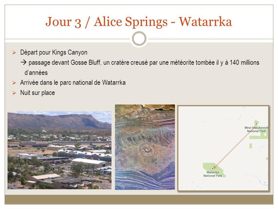 Jour 3 / Alice Springs - Watarrka Départ pour Kings Canyon passage devant Gosse Bluff, un cratère creusé par une météorite tombée il y à 140 millions dannées Arrivée dans le parc national de Watarrka Nuit sur place