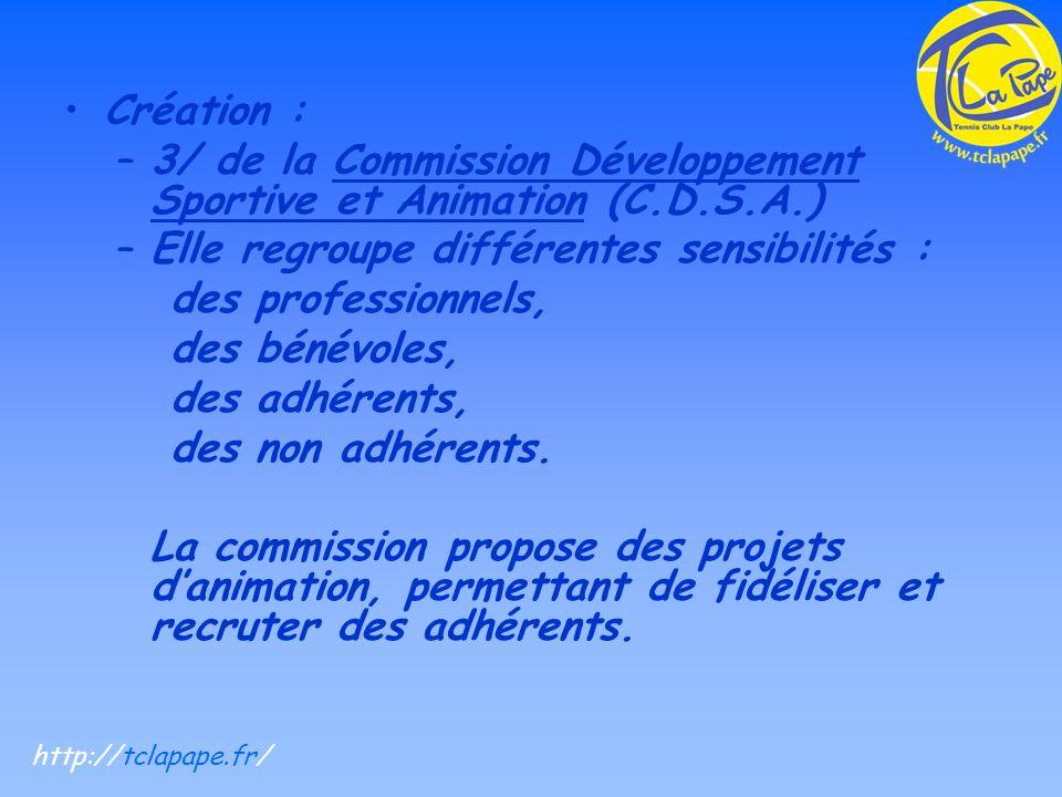Création : –3/ de la Commission Développement Sportive et Animation (C.D.S.A.) –Elle regroupe différentes sensibilités : des professionnels, des bénévoles, des adhérents, des non adhérents.