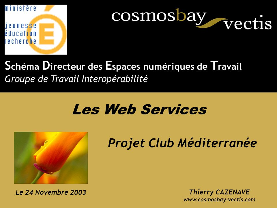 SDET – Groupe de travail interopérabilité – 24 Novembre 2003 12 CLUB MÉDITERRANÉE – Architecture Mise en œuvre dune interface XML sur HTTP Serveur(s) client(s) Serveur dapplication Serveur Mainframe OS/390-DB2 Postes clients HTTP In...net TCP/IP XML Produits Groupes Internet Frontal XML Réservations PROTOTYPE