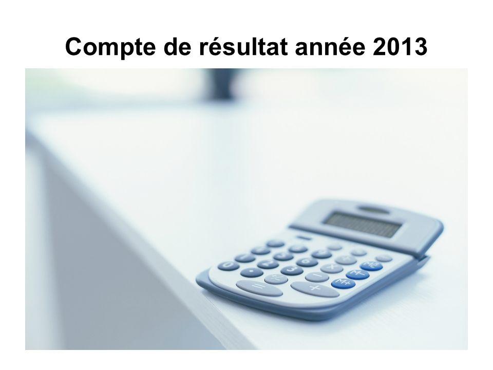 Compte de résultat année 2013