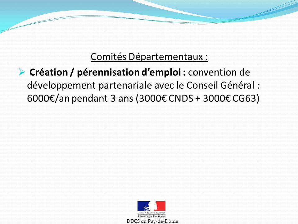 Comités Départementaux : Création / pérennisation demploi : convention de développement partenariale avec le Conseil Général : 6000/an pendant 3 ans (3000 CNDS + 3000 CG63) DDCS du Puy-de-Dôme