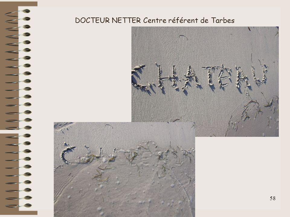 F.Lahalle INS-HEA 60 av. des Landes 92150 Suresnes 58 DOCTEUR NETTER Centre référent de Tarbes