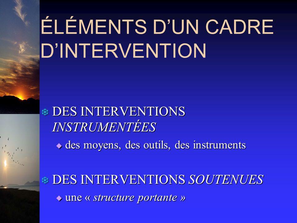 ÉLÉMENTS DUN CADRE DINTERVENTION T DES INTERVENTIONS INSTRUMENTÉES des moyens, des outils, des instruments des moyens, des outils, des instruments T D