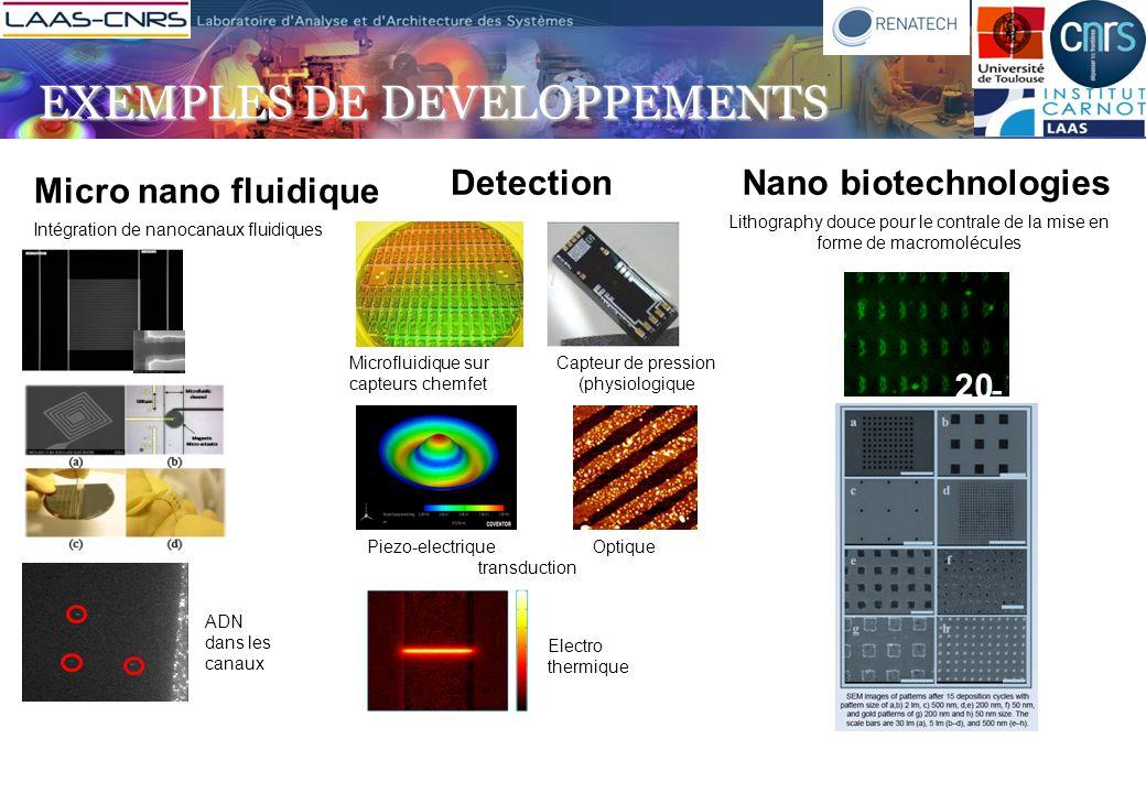 Micro nano fluidique DetectionNano biotechnologies Intégration de nanocanaux fluidiques ADN dans les canaux Microfluidique sur capteurs chemfet Capteu