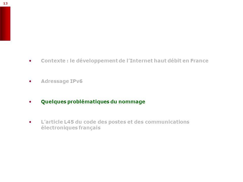 13 Contexte : le développement de lInternet haut débit en France Adressage IPv6 Quelques problématiques du nommage Larticle L45 du code des postes et