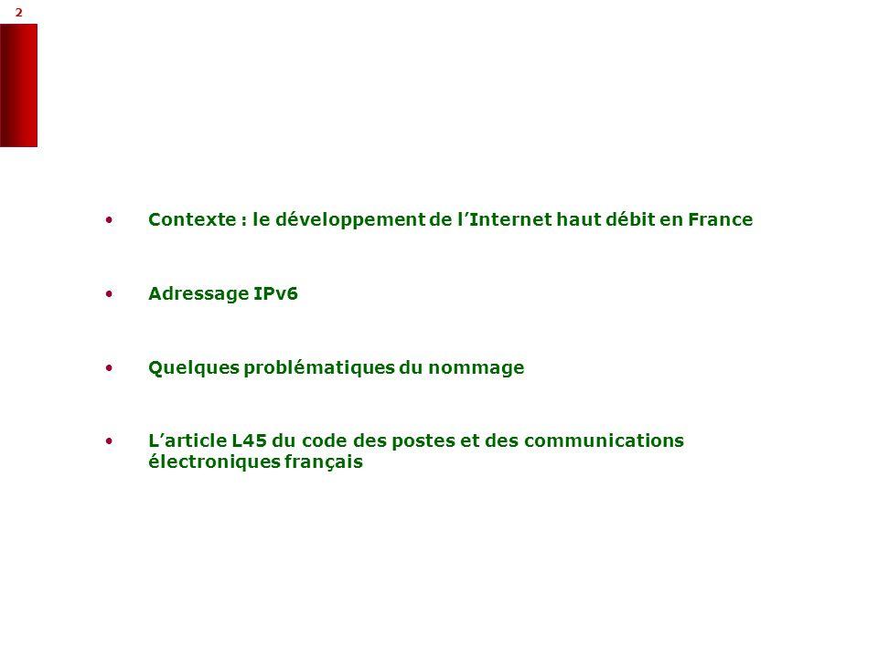 3 3 Contexte : le développement de lInternet haut débit en France Le nommage et ladressage sur Internet Quelques problématiques sous-jacentes Larticle L45 du code des postes et des communications électroniques français Le passage à IP v6