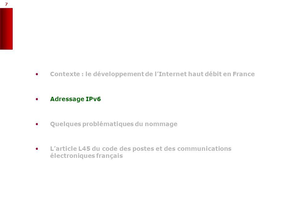 7 7 Contexte : le développement de lInternet haut débit en France Adressage IPv6 Quelques problématiques du nommage Larticle L45 du code des postes et