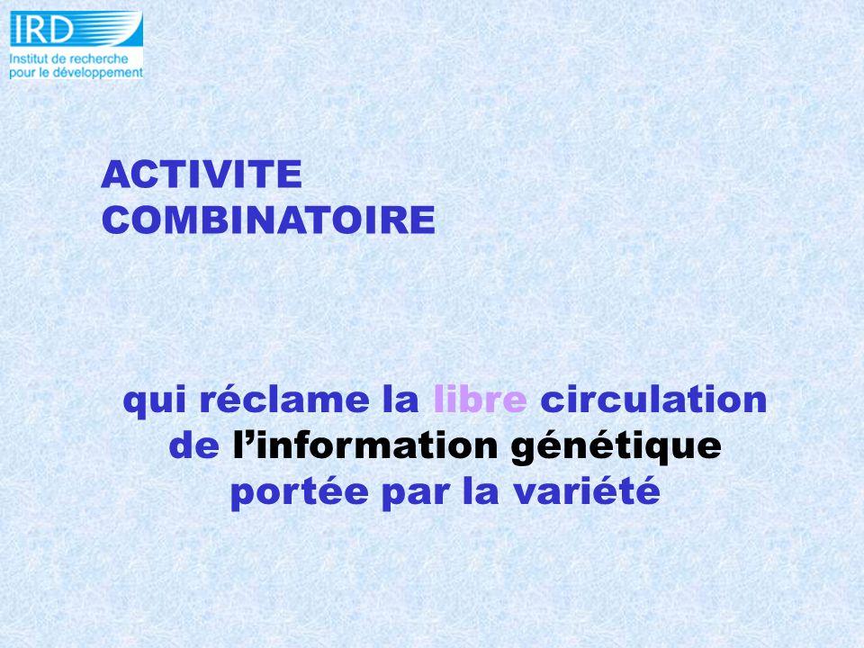 ACTIVITE COMBINATOIRE qui réclame la libre circulation de linformation génétique portée par la variété