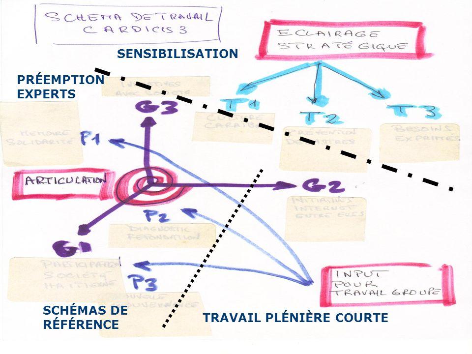 SENSIBILISATION PRÉEMPTION EXPERTS TRAVAIL PLÉNIÈRE COURTE SCHÉMAS DE RÉFÉRENCE