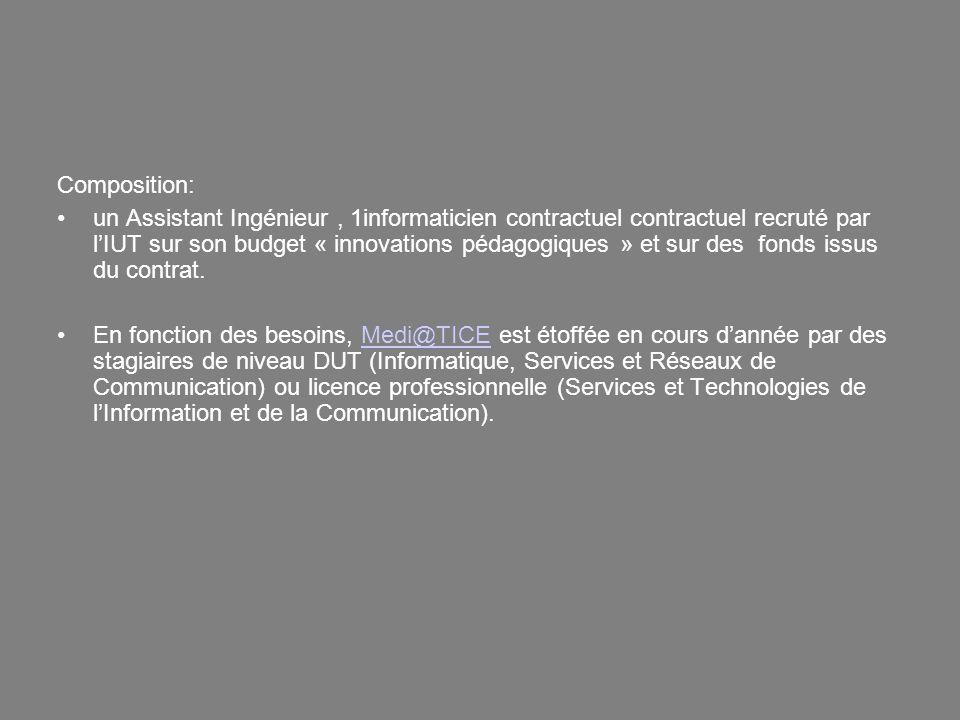 Composition: un Assistant Ingénieur, 1informaticien contractuel contractuel recruté par lIUT sur son budget « innovations pédagogiques » et sur des fo