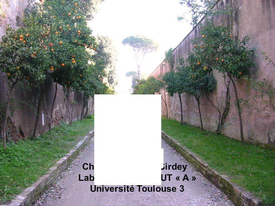 http://lairdil.org Christine Vaillant Sirdey Laboratoire lairdil IUT « A » Université Toulouse 3 Nîmes mai 2007 XXIXè Congrès Apliut